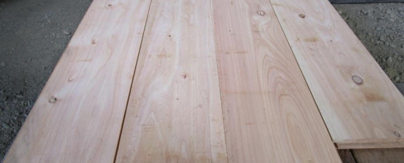 img_0240 Cypress Macrocarpa for Cladding n Floorboards