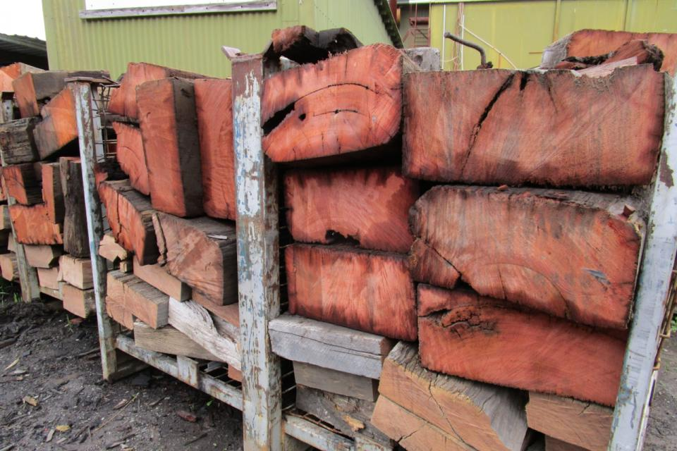 Jarrah For Fire Wood Use