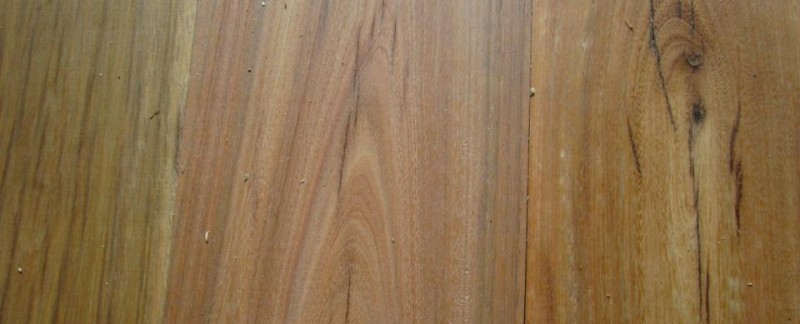 img_0722 Spotted Gum for Joinery n Furniture